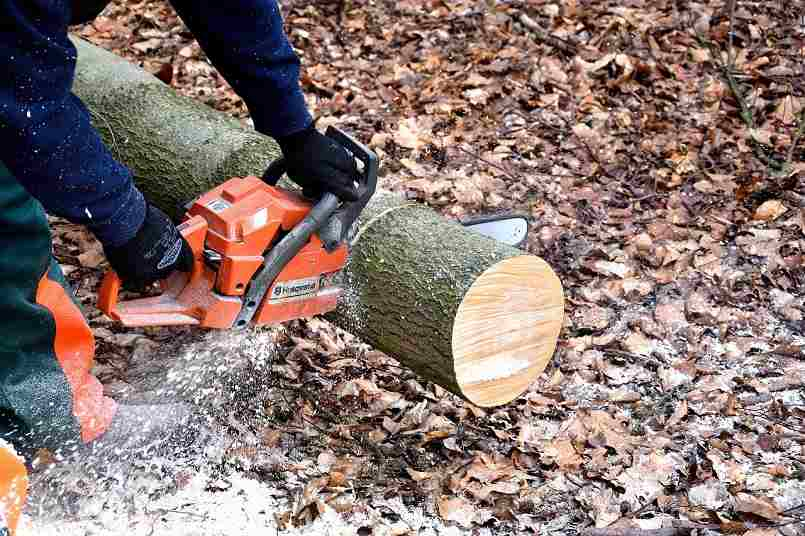 Best Battery Chainsaw Reviews
